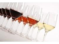 Verre à vin blanc - 40 pc